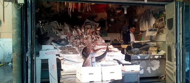 Mimmo, trasteverino d'Egitto: «Le mie passioni sò Dio, il lavoro e la patata»